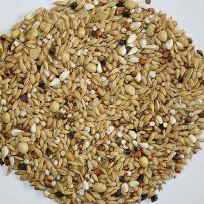 VERSELE-LAGA Traditional Premium Hirn 1