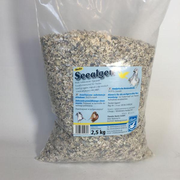 BACKS Seealgengrit, 2,5 kg