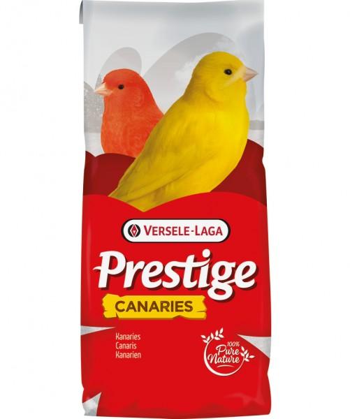 Prestige Kanarien Zucht
