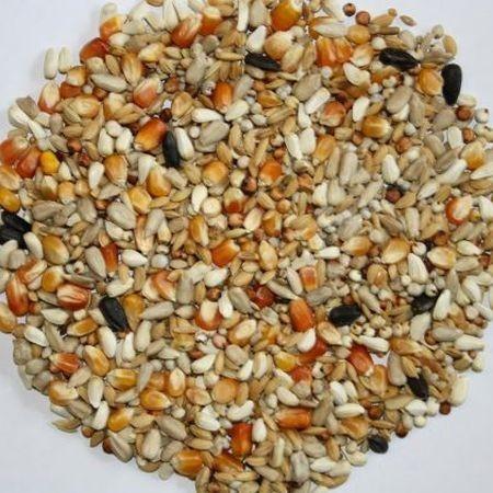 VERSELE-LAGA Traditional Premium Hirn 3