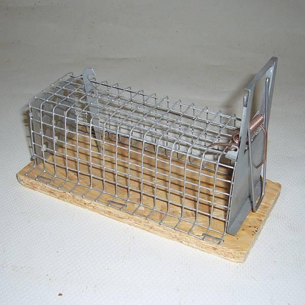 Drahtkastenfalle für Mäuse