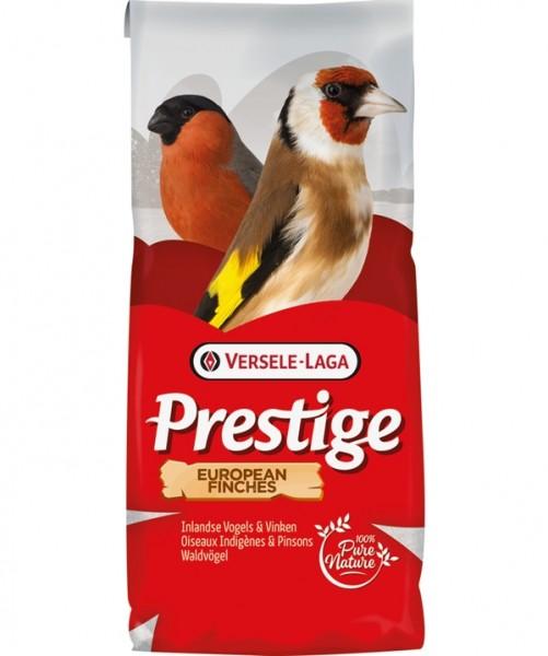 Prestige Waldvögel Zucht ohne Rübsen